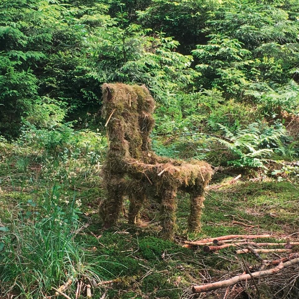 Der Wald-Kunstweg der GGS Wiedenest